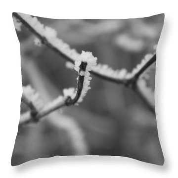 Throw Pillow featuring the photograph Frost 6 by Antonio Romero