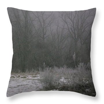 Frost And Fog   Throw Pillow by Julie Grace
