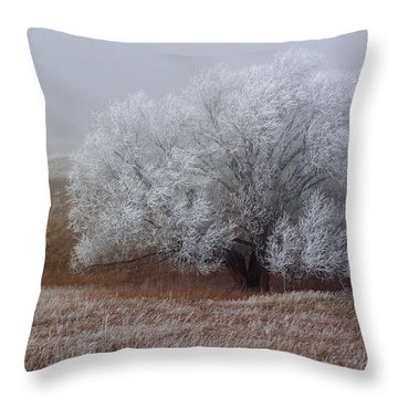Frost And Fog Throw Pillow by Alana Thrower