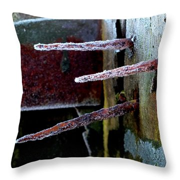 Frost And Rust Throw Pillow