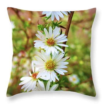 Frost Aster Throw Pillow