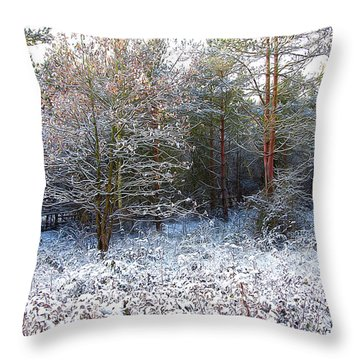 Frost Bite Throw Pillow by Svetlana Sewell