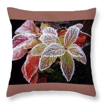 Frost Cluster Throw Pillow