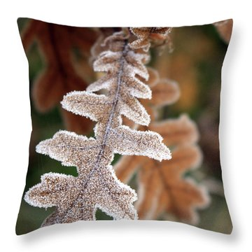 Frost Covered Oak Leaf Throw Pillow