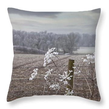 Frost-covered Rural Field Cumbria Throw Pillow by John Short