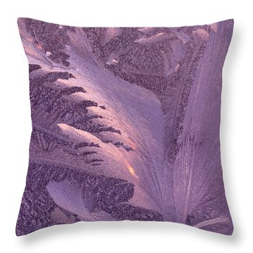 Frost Frosty Window Throw Pillow