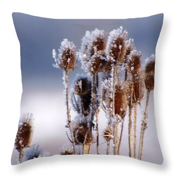 Frost In The Morning Throw Pillow