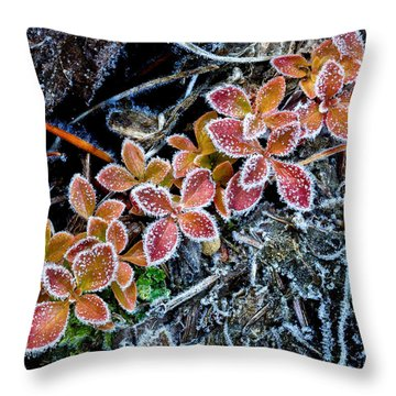 Frost Line Throw Pillow