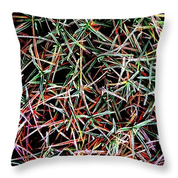 Frost On The Grass Throw Pillow