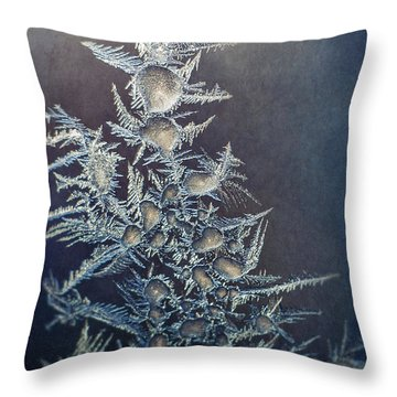 Frost Home Decor