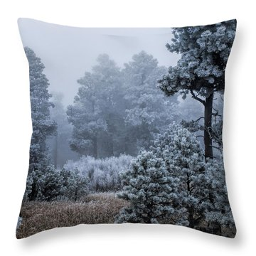 Frosted Throw Pillow by Alana Thrower
