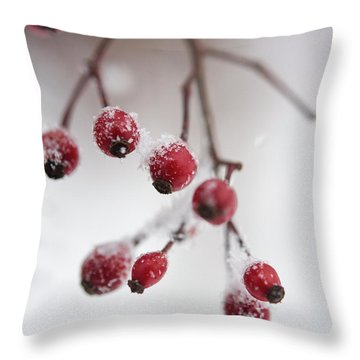 Frosted Berries Throw Pillow