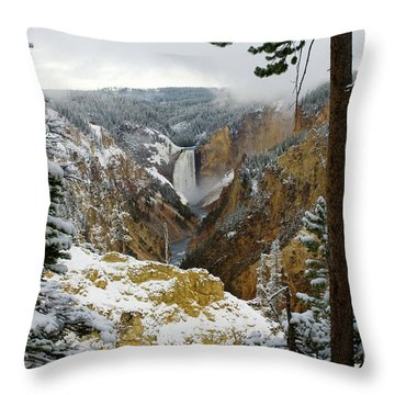 Throw Pillow featuring the photograph Frosted Canyon by Steve Stuller