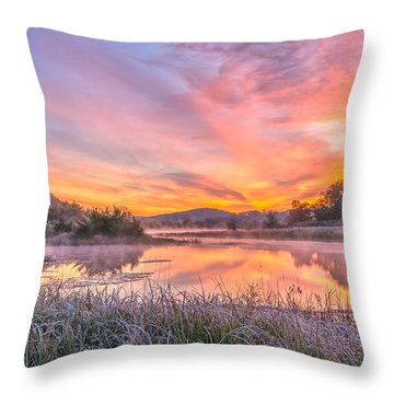 Frosted Dawn At The Wetlands Throw Pillow