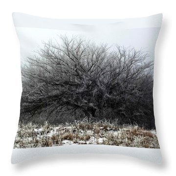 Frosted Elm Throw Pillow