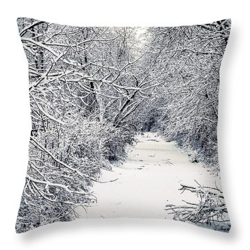 Frosted Feeder Throw Pillow