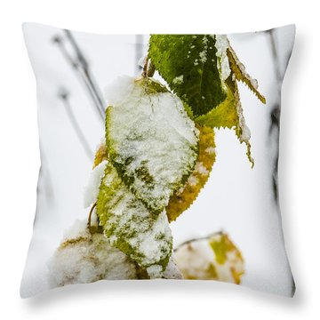 Frosted Green And Yellow Throw Pillow