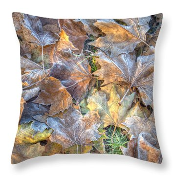 Frosted Leaves 8x10 Throw Pillow