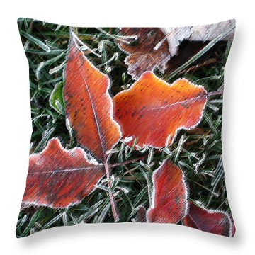 Throw Pillow featuring the photograph Frosted Leaves by Shari Jardina