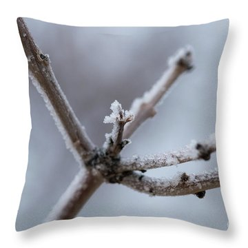 Frosted Morning Throw Pillow by Ana V Ramirez