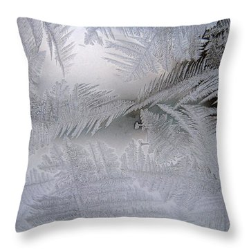 Frosted Pane Throw Pillow