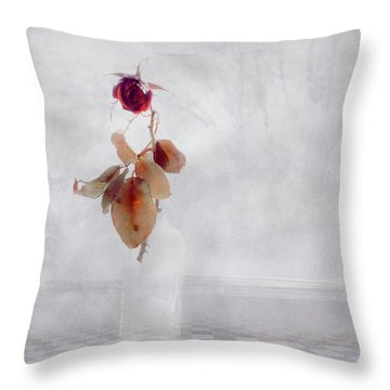 Throw Pillow featuring the photograph Frosted Red Rose In Window Of Time by Anna Louise