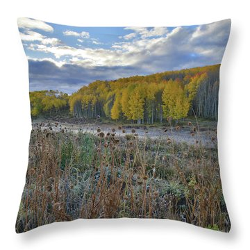 Frosted Thistle Garden On Wilson Mesa Throw Pillow
