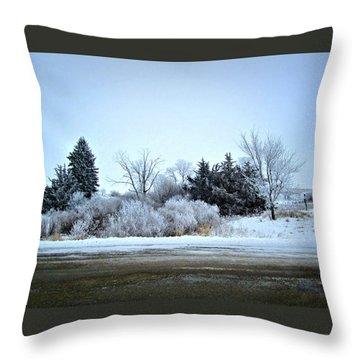 Frostie Throw Pillow