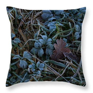 Frostings 4 Throw Pillow