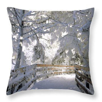 Frosty Boardwalk Throw Pillow