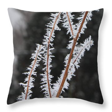 Frosty Branches Throw Pillow by Carol Groenen