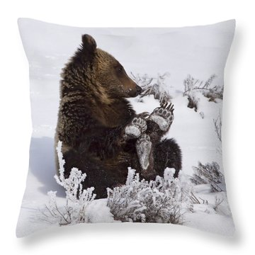 Frosty Feet-signed Throw Pillow by J L Woody Wooden