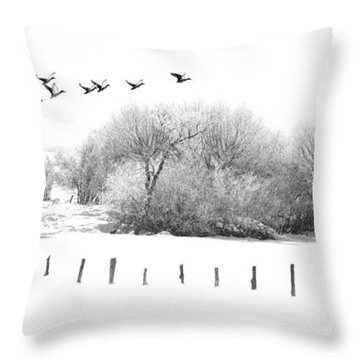 Frosty Flight Throw Pillow