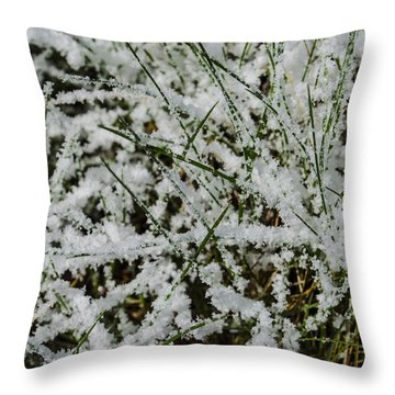 Throw Pillow featuring the photograph Frosty Grass by Deborah Smolinske