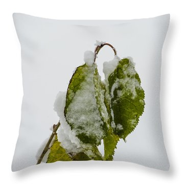 Frosty Green Leaves Throw Pillow