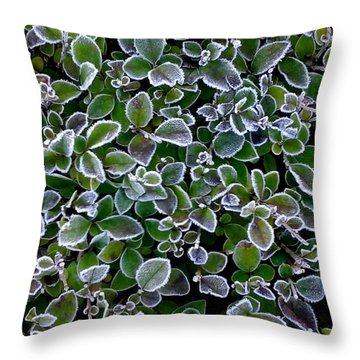 Frosty Hedgerow Throw Pillow