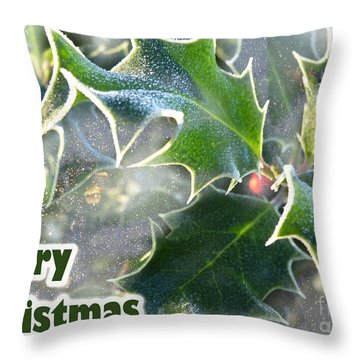 Throw Pillow featuring the photograph Frosty Holly by LemonArt Photography