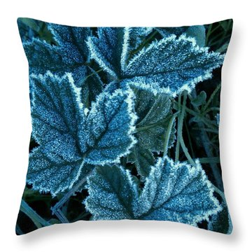 Frosty Ivy Throw Pillow