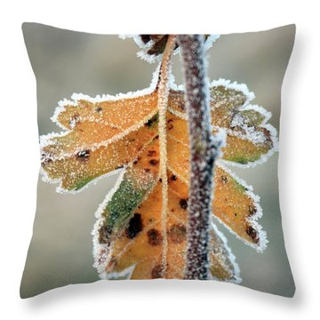 Frosty Leaf Throw Pillow