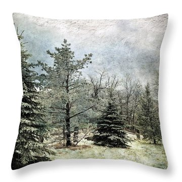 Frosty Throw Pillow by Lois Bryan