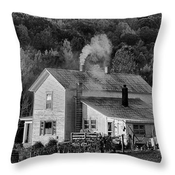 Frosty Morning Throw Pillow by Denise Romano
