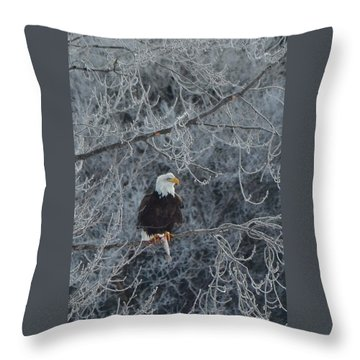 Frosty Morning Eagle Throw Pillow