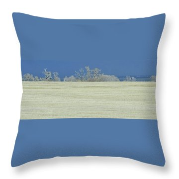 Frosty Morning Landscape Throw Pillow