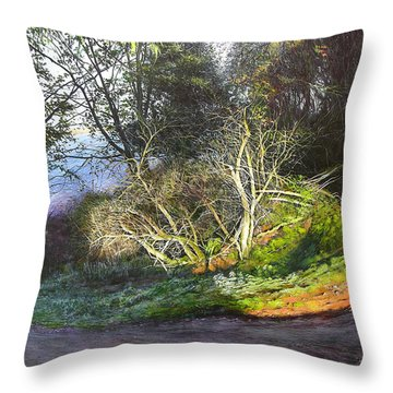 Frosty Morning Near Nant Clwyd Throw Pillow by Harry Robertson
