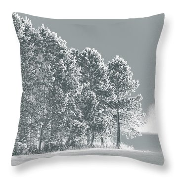Throw Pillow featuring the photograph Frosty Morning by WB Johnston