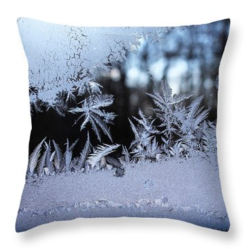 Frosty Morning Window Throw Pillow by Liz Allyn