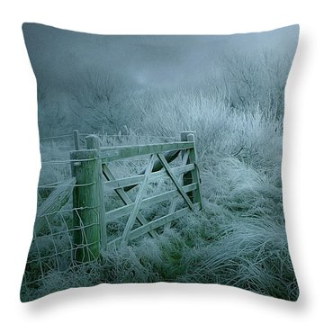 Frosty Night Throw Pillow