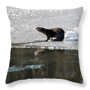 Frosty River Otter  Throw Pillow by Mike Dawson