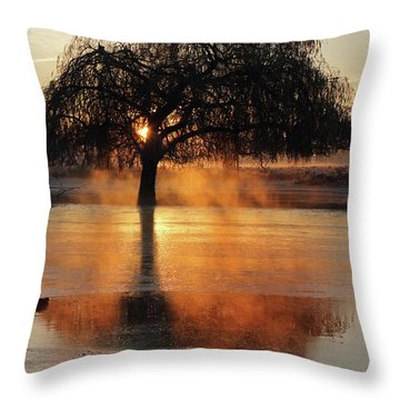 Frosty Sunrise In Bushy Park London 2 Throw Pillow