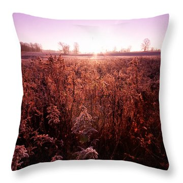 Throw Pillow featuring the photograph Frosty Sunrise by Lars Lentz